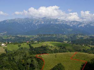 Teren de vanzare in zona Bran- Moeciu pretabil pensiune sau ferma