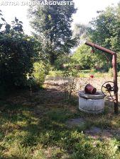 Teren si casa batraneasca de vanzare in Malu cu Flori- Dambovita